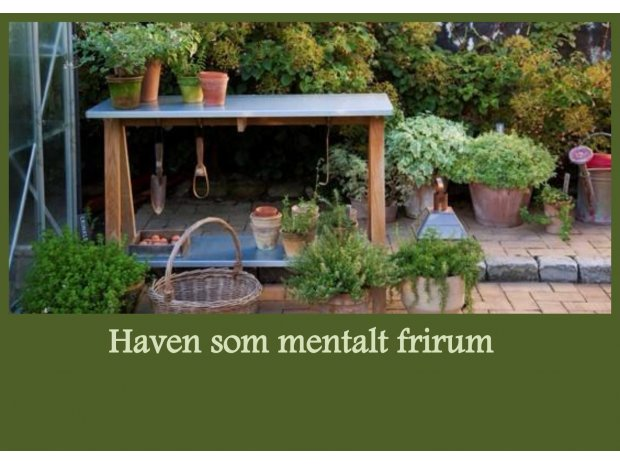 Haven som mentalt frirum